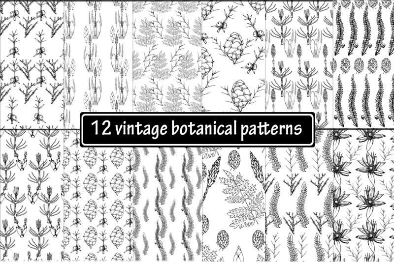 12-hand-drawn-vintage-botanical-patterns