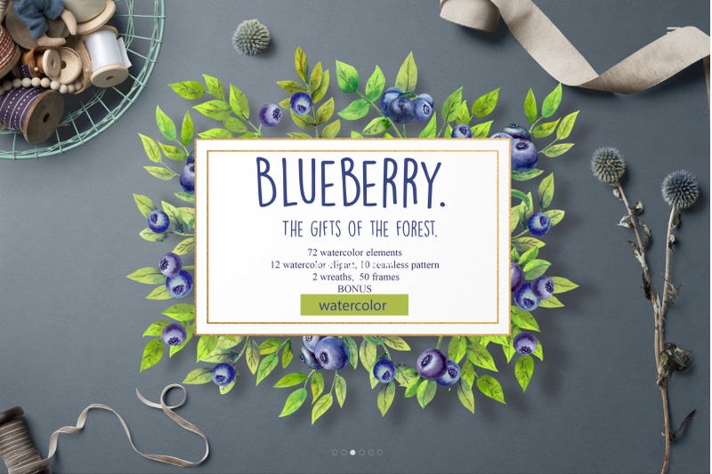 blueberry-the-gifts-of-the-forest