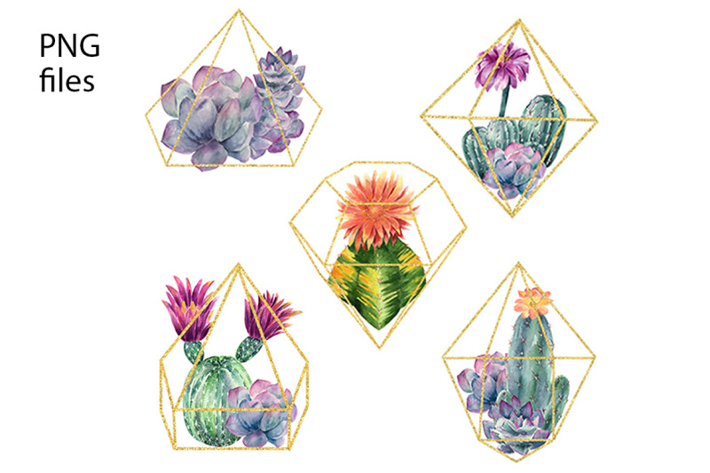 watercolor-cactus-and-flowers-clipart