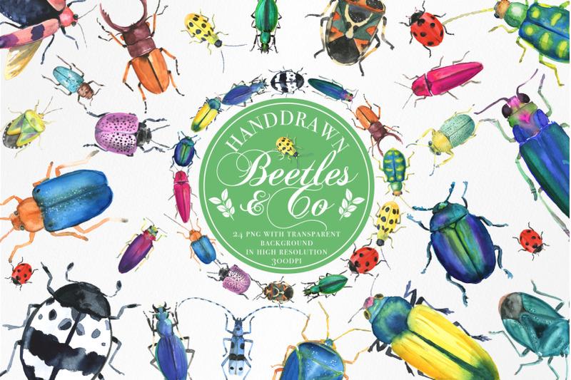 handdrawn-watercolor-beetles-amp-co