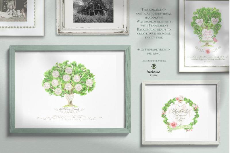 family-tree-creator