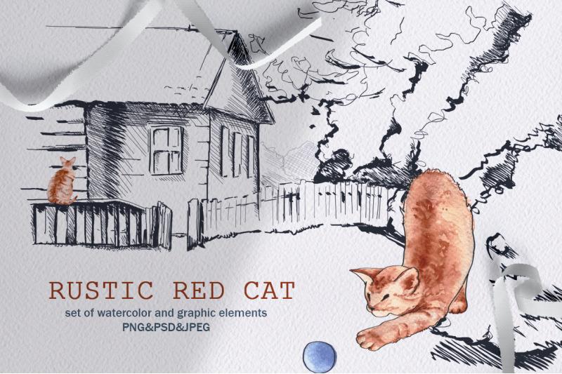 rustic-red-cat