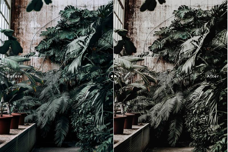 botanical-mobile-amp-desktop-lightroom-presets