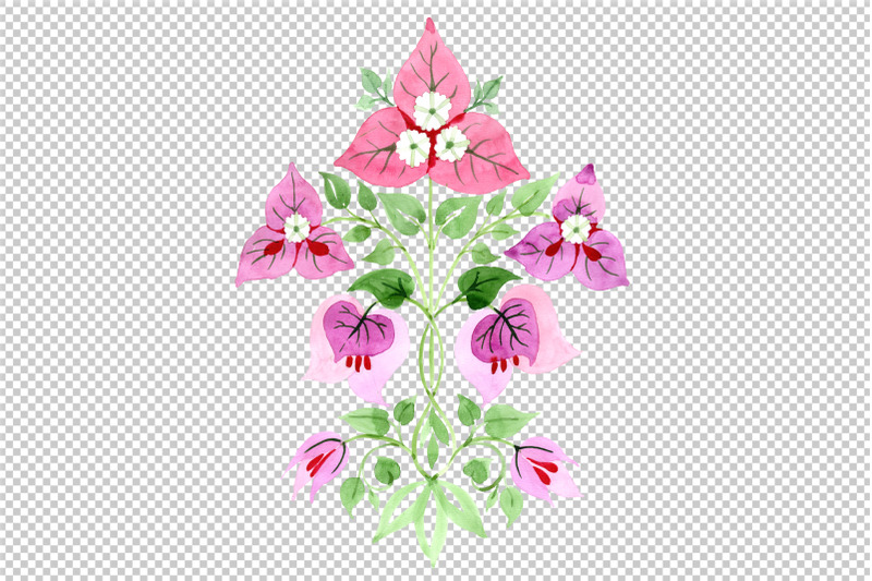 bougainvillea-ornament-pink-watercolor-png