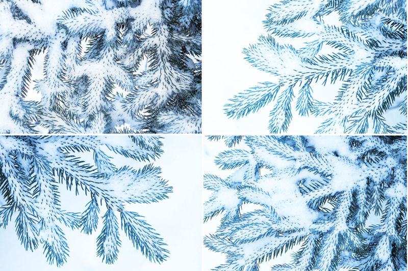 13-blue-tree-background-textures