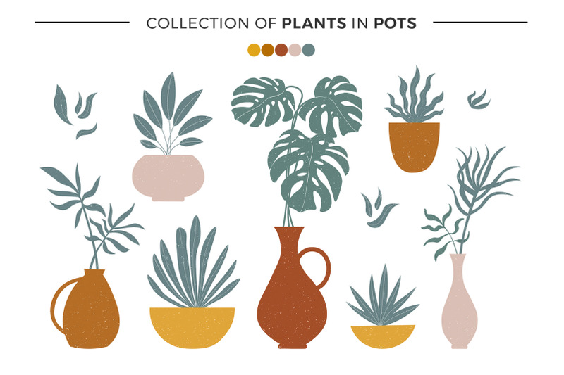 modern-abstract-shapes-and-plants