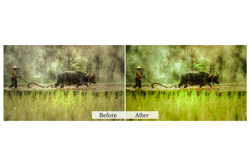 160-natural-photoshop-actions