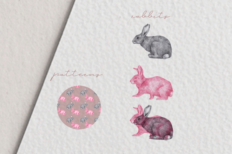 hand-drawn-rabbits-illustrations