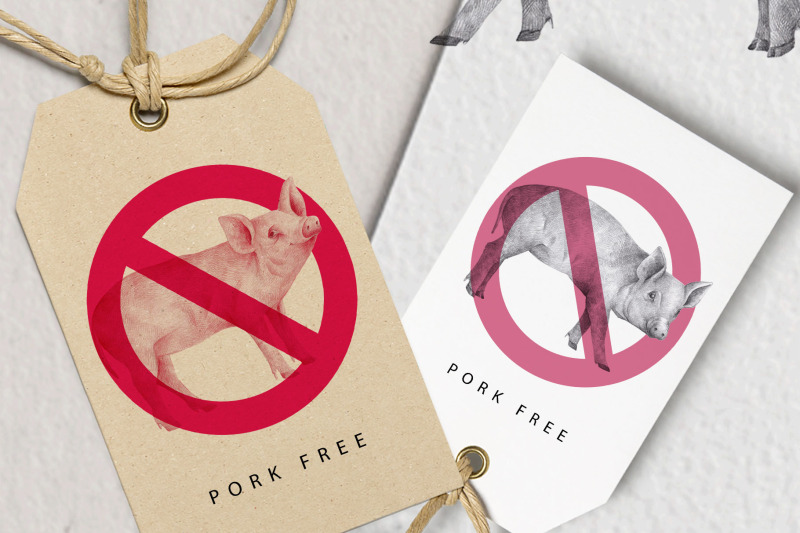 hand-drawn-pigs-illustrations