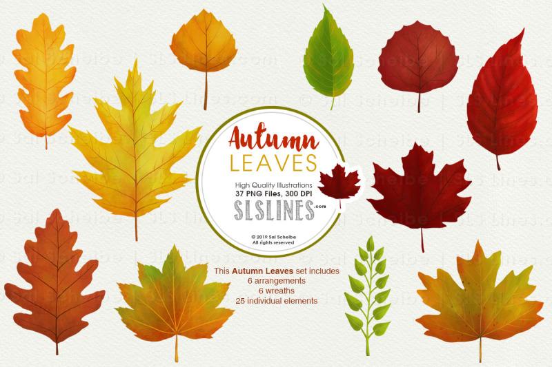 autumn-leaves-fall-foliage-watercolor-clipart