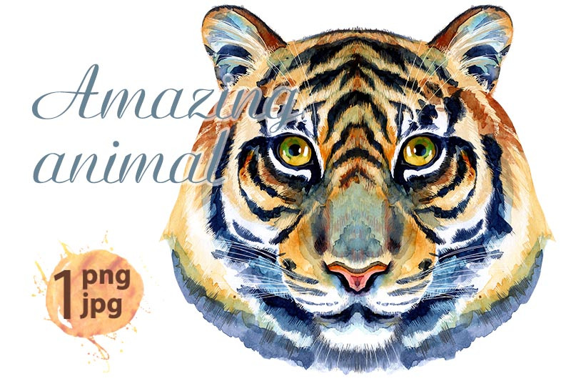 tiger-head-horoscope-character-isolated-on-white-background