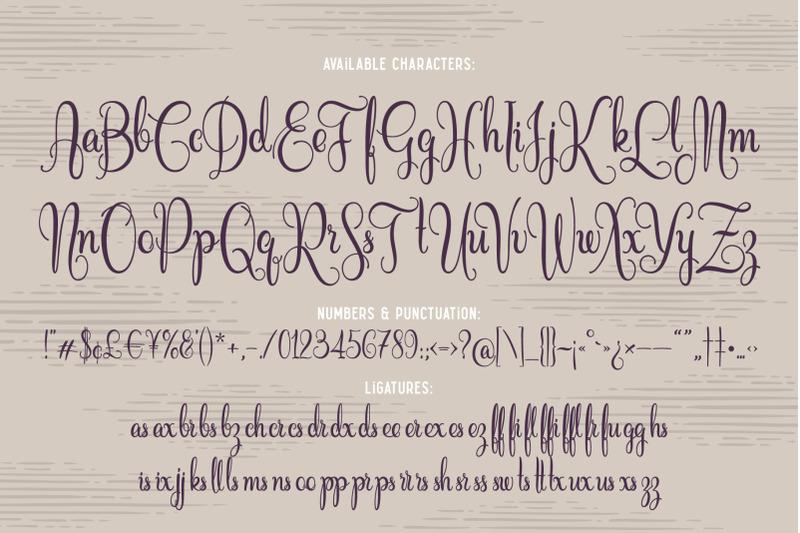 cidrella-script-amp-graphics
