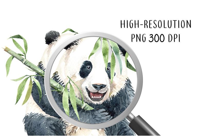 panda-with-bamboo-watercolor-animal-cliparts