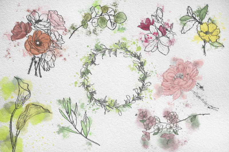 set-watercolor-and-ink-flowers