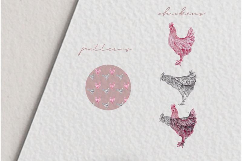 hand-drawn-chicken-illustrations