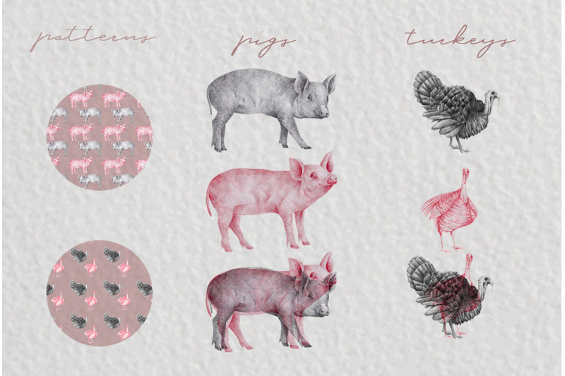 farm-animals-illustration-pack