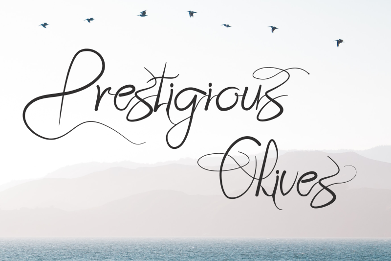 prestigious-olives