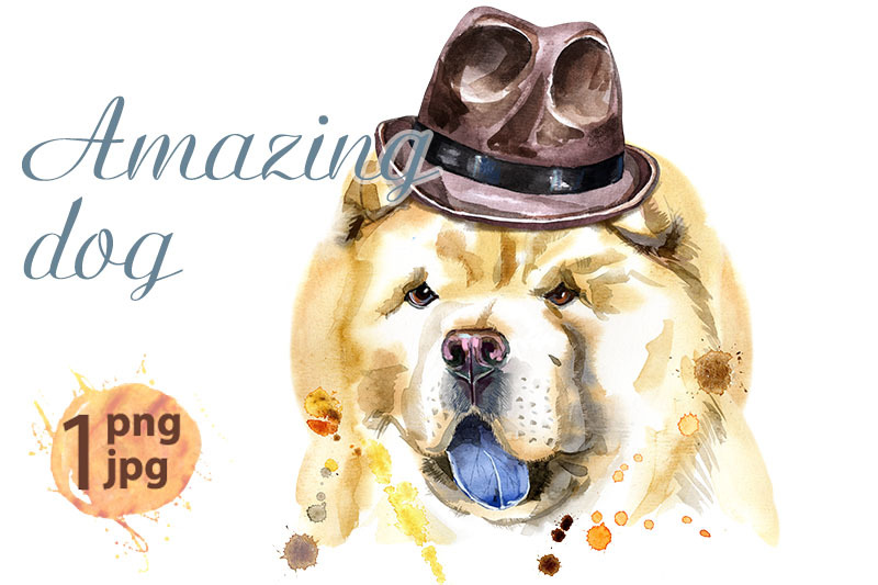 watercolor-portrait-of-chow-chow-dog-in-a-brown-hat