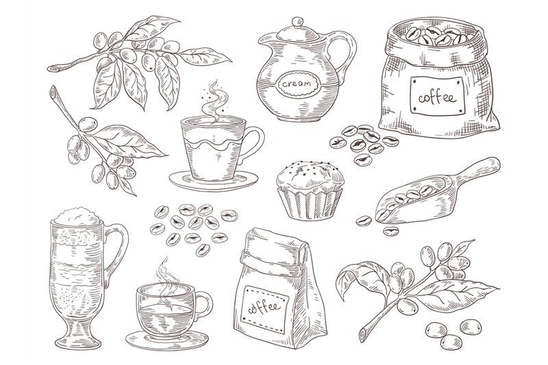hand-drawn-coffee-beans-vintage-sketch-of-coffee-leaves-branch-roaste