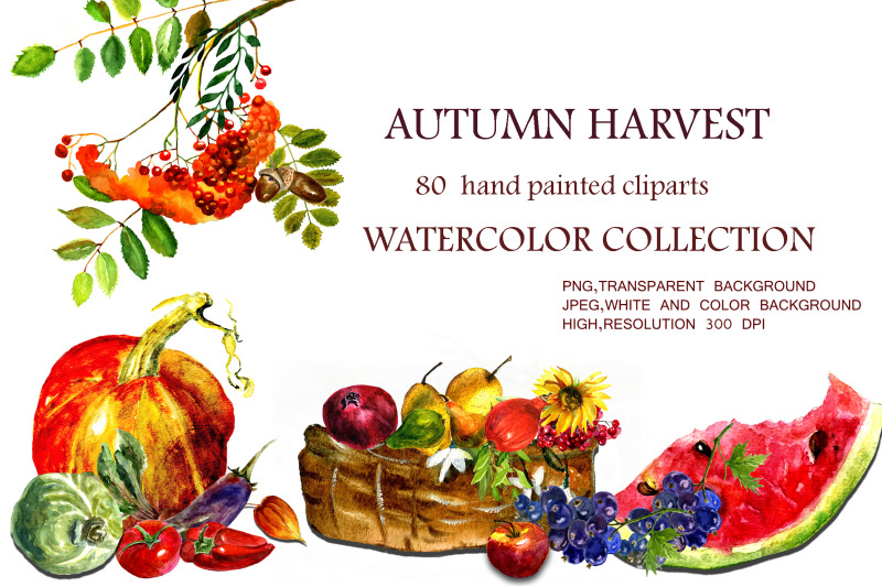 watercolor-collection-autumn-harvest