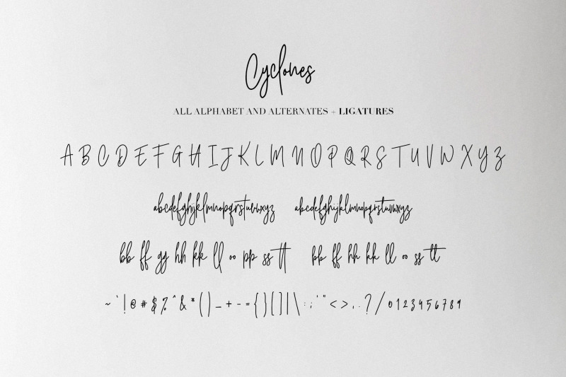 cyclones-signature-brush-font