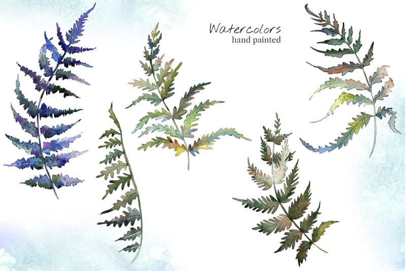 fern-leaf-clipart-watercolor-png