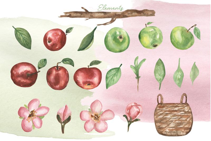 apple-harvest