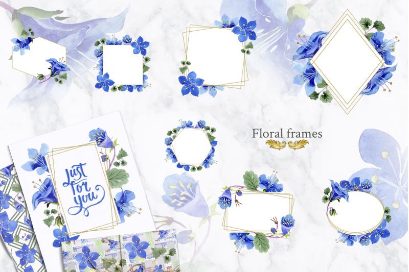 phacelia-or-bellflower-039-s-watercolor-clipart-blue-png