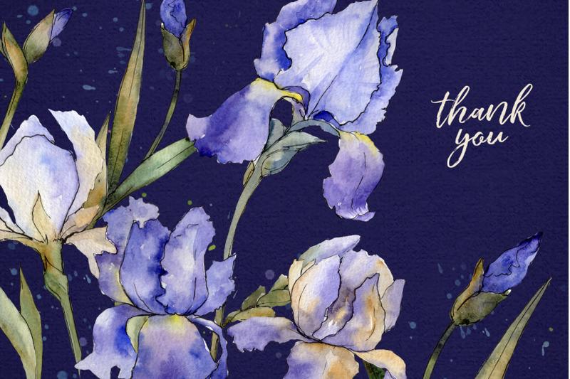 blue-irises-flowers-morning-dawn-watercolor-png