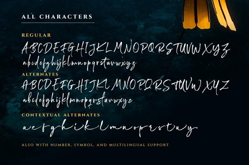 wonderstory-brush-script