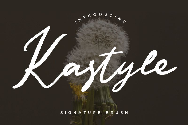 kastyle-signature-brush