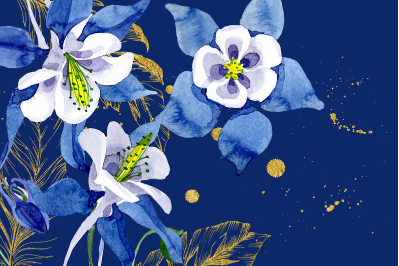 watercolor-flower-aquilegia-blue-png