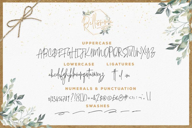 bellissima-signature-script-font