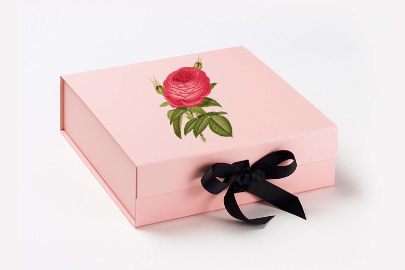 100-antique-vintage-ephemera-wedding-rose-flower-png-images