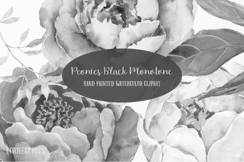 black-and-white-peony-collection