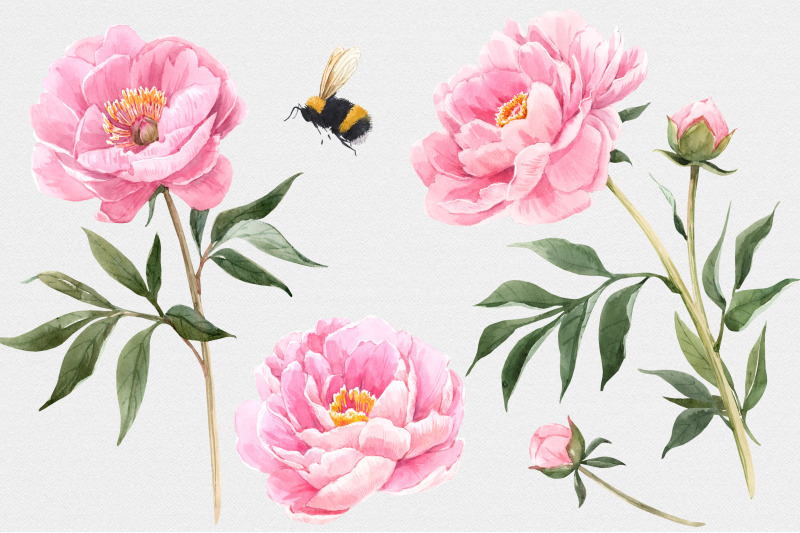blooming-garden-watercolor-floral-set-png-psd