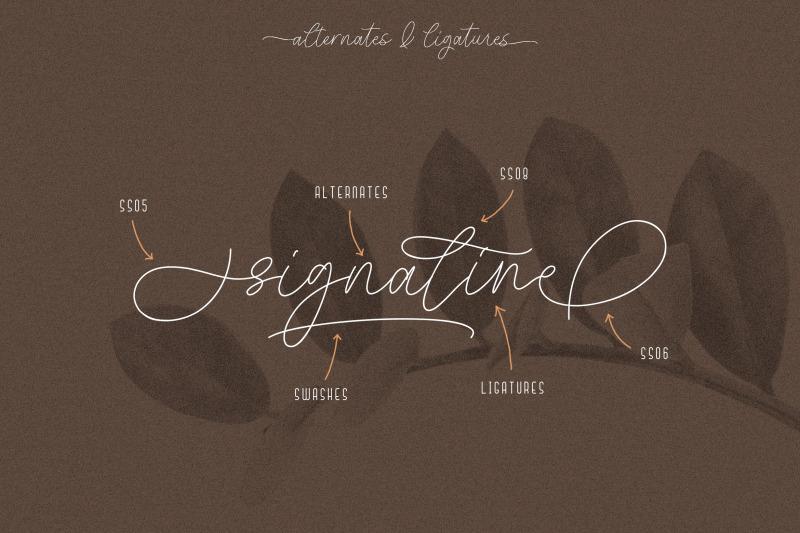 signaline-font-duo-extras
