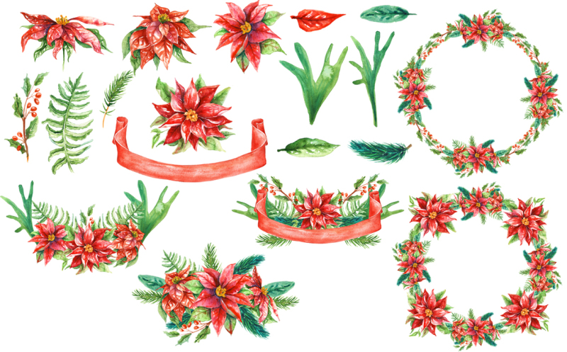 watercolor-poinsettia-flowers-christmas-cliparts