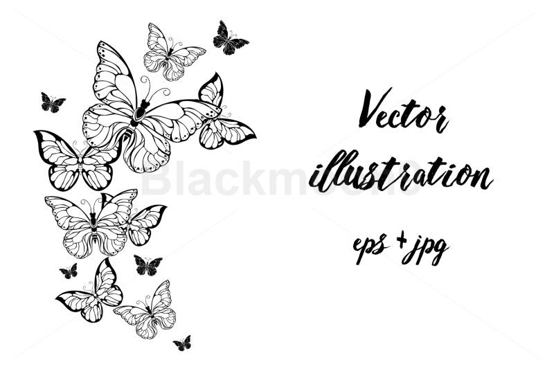 flying-contour-butterflies