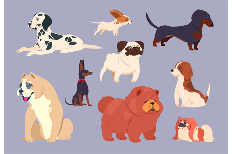 cartoon-dogs-puppy-pet-different-breeds-chow-chow-dachshund-and-dal