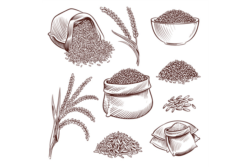 hand-drawn-rice-doodle-sack-and-sketch-rice-ears-vector-set