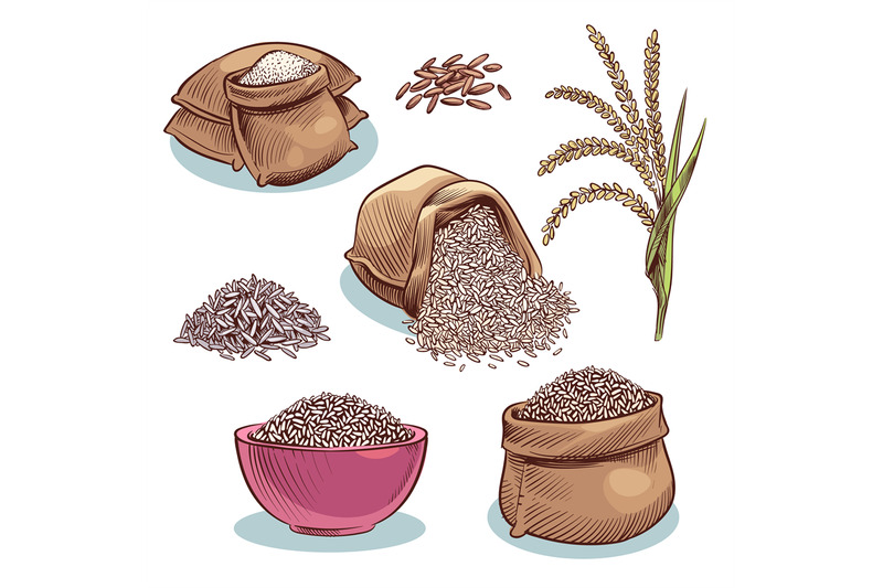 rice-sacks-bowl-with-rice-grains-and-ears-japanese-food-rice-storag