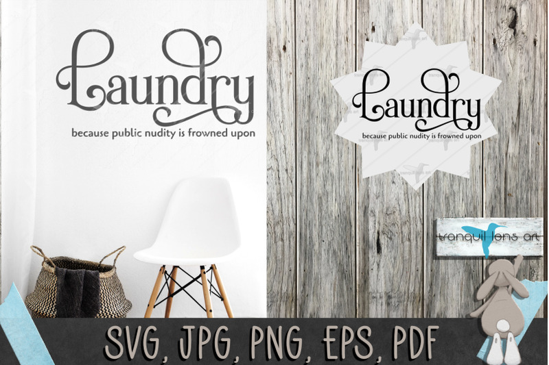 laundry-because-public-nudity-if-frowned-upon