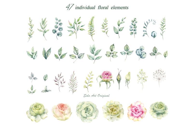 white-roses-watercolor-clipart-collection-with-white-roses-and-eucalyp