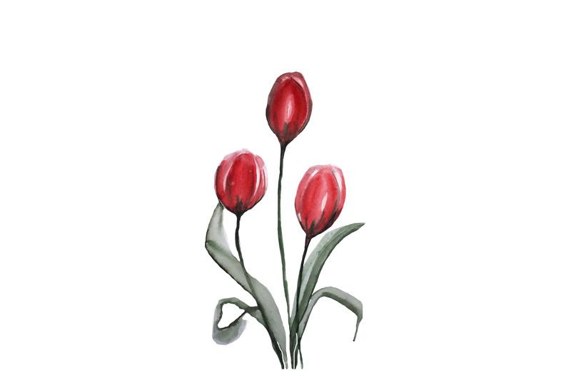 watercolor-tulips-summer-flowers