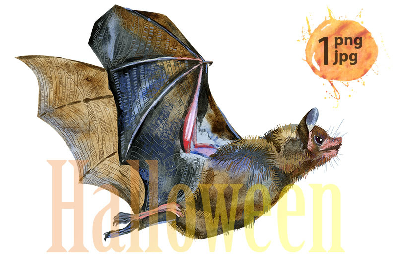watercolor-illustration-of-a-bat-in-white-background
