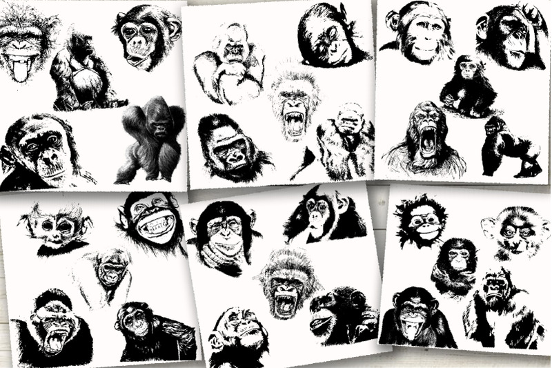 30-wild-monkey-silhouette-vector
