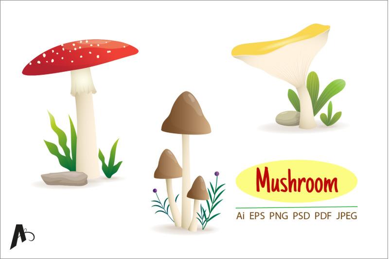 different-kinds-of-mushroom-illustration
