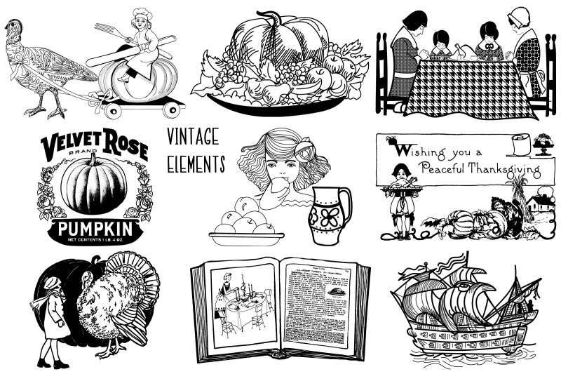 thanksgiving-vintage-and-illustrative-vector-and-png
