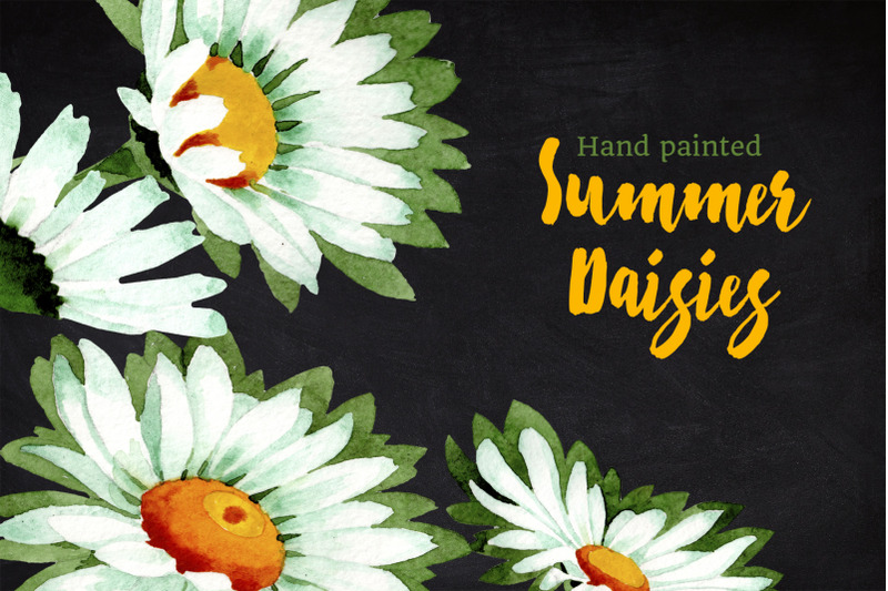 watercolor-daisy-white-flower-pn